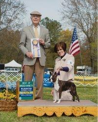 Wilmington Kennel Club--4/25/14