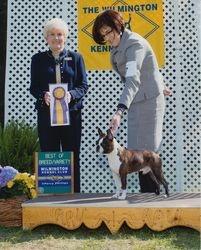 Wilmington Kennel Club--4/26/13
