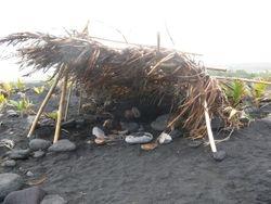 Black Sand Beach - Hideaway