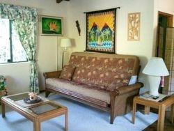 Queen Futon in Livingroom