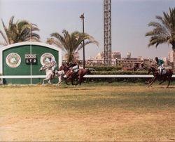 Shaalan's Last Race