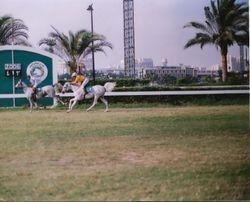 Shaalan's 5th Race