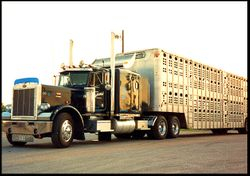 Double-decker cattle trailer carrying horses