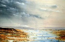 The Wet Kakadu.