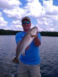 Redfish in Florida