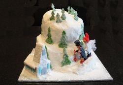 Grooms Cake - Ski Mountain Theme