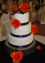 3 Tiered Wedding Cake with Tree Trunk base