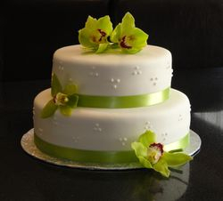 2 tiered Green Orchid Wedding Cake