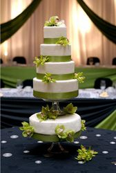 5 Tiered Wedding Cake with Green Orchids
