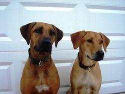 Mika and Khoi