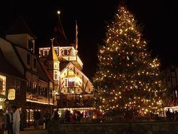 Helen Christmas Lights
