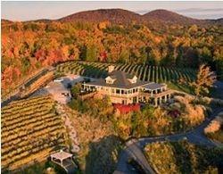 Wolf Mountain Vineyard
