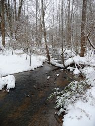 Creek lined with snow