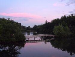 Skylake bridge
