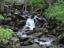 A mountain creek