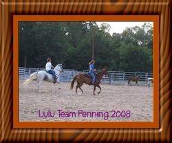 Lulu Team penning
