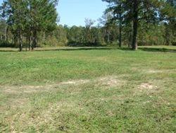 Big Pasture by round pen