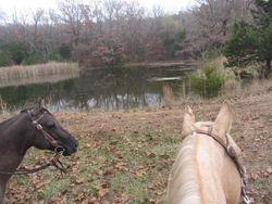 Trail riding in Missouri