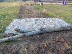 Rocks & a log