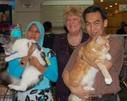 Indonesia Championship Show 2008 (CFA Show)