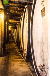 River Cruise & Winery Tour