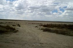 Camped beside the Dry Lake Hindmarsh