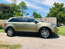 2013 Ford Edge Limited  $