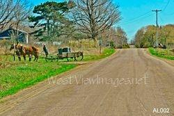 Amish Living - Chautauqua, NY
