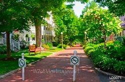 Vincent Avenue