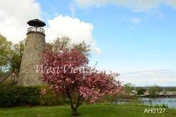 Barcelona Lighthouse - Spring