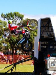 Splat at the Whyalla Show