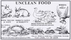 UNCLEAN FOOD