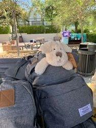 Diaper bag with bear.