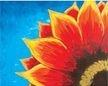 Red SunFlower, Social ArtWorking