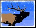 Bugling Elk in Winter