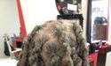 Braids by Bee styles locs when done maintaining roots