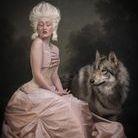 Salli Gainsford Photography