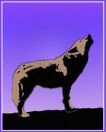 Wolf at Sunset  Graphic Design Art