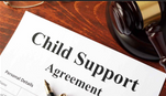 Our Child support payment programs is number #1 in the nation.