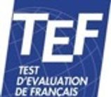 TEF French revision, help and tuition classes with an online private tutor to get you ready for the exam at Alliance Francaise or Institut Francais.
