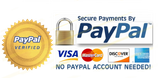 PayPal Users in Ensuring Secured Payment
