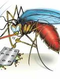 Mosquiotos, protext yourself, greek2m travelers health