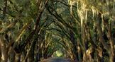 South Carolina Ride2Guide.com, Motorcycle Roads, Motorcycle Routes, Motorcycle Touring