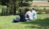 Psychotherapy in Peterborough