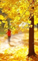 femme se promène en automne