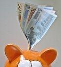 immobilier courtier courtage griffon finances crédit prêt banque privée