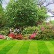 Fresh striped lawn
