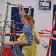Developmental Gymnastics