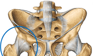 Hip Injury Treatment