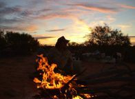 Camel Safari Treks Trekking Tours and Expeditions Campfire Cooking. Outback Australian Camels, Flinders Ranges, South Australia